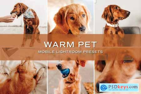 5 Warm Pet Lightroom Presets 5701723