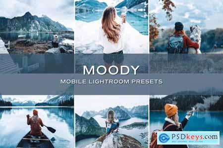 5 Moody Lightroom Presets 5701753