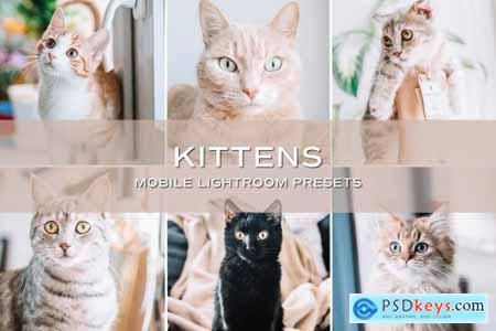 5 Kittens Lightroom Presets 5701730