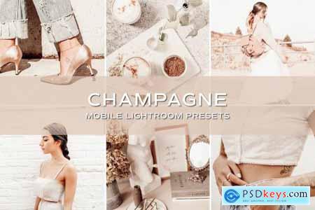 5 Champagne Lightroom Presets 5701806