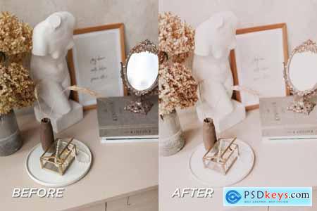 5 Blush Lightroom Presets 5701707