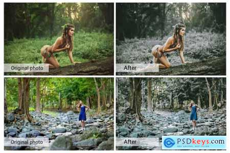 Dramatic Forest Presets 5689538