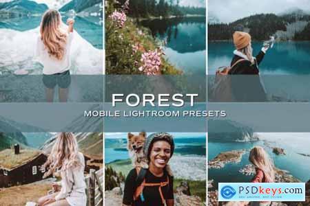 5 Forest Lightroom Presets 5699079