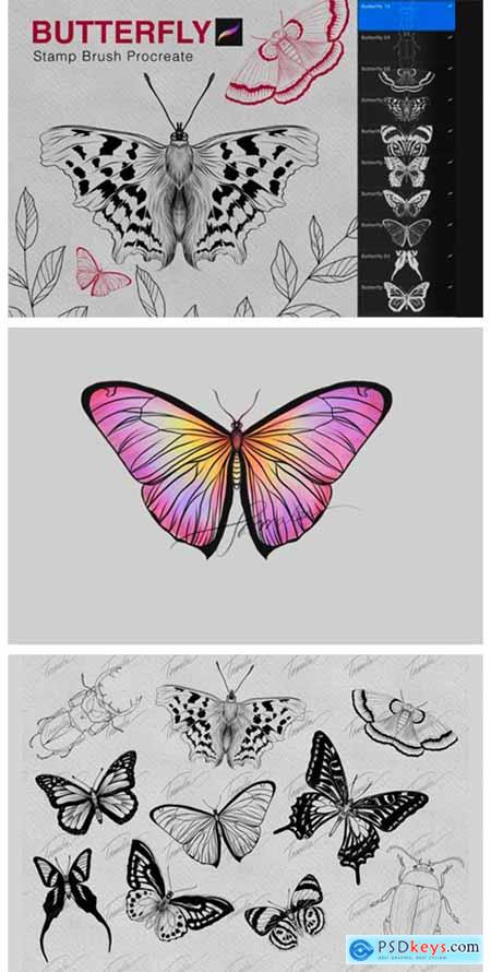Butterfly Procreate Stamps Brush 7175257