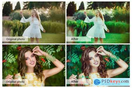 Fairy Garden Presets 5689608