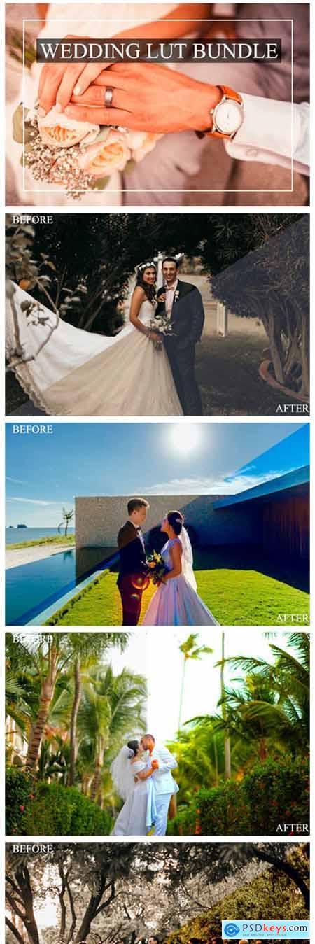 Luts - Wedding 4076783