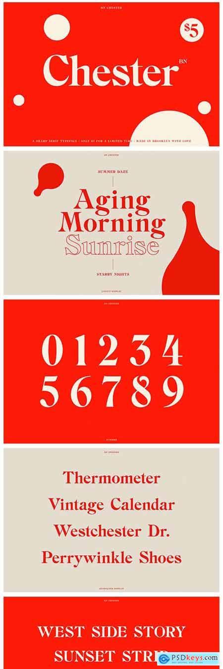 BN Chester - A Unique Serif Font 5309357