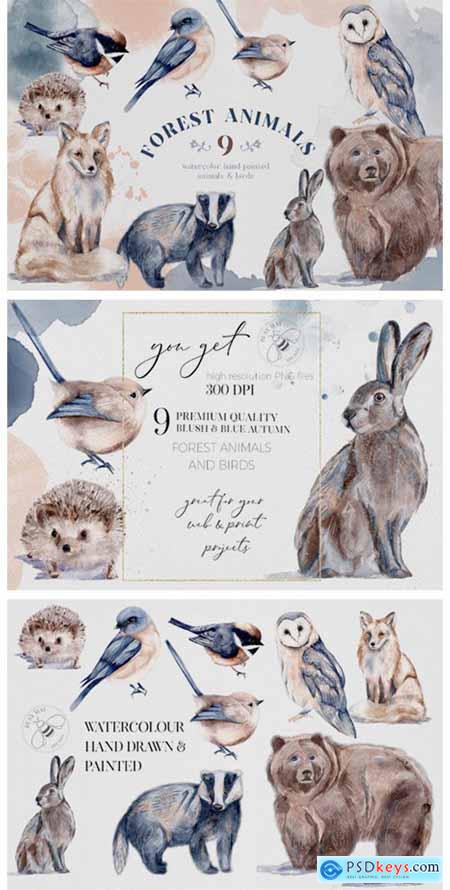 Watercolor Forest Animals Birds Owl 6945981