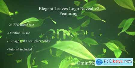 Elegant Leaves Logo Reveal V2 18142899