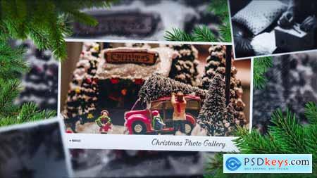 Christmas Gallery Slideshow 29608001