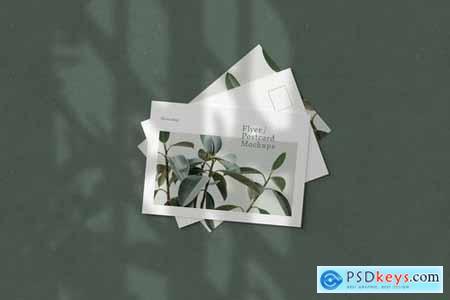 Flyer - Postcard Mockups - 5723458