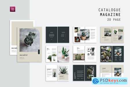 Succulent Catalog Product
