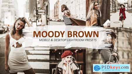 Lightroom Brown Presets 5639204
