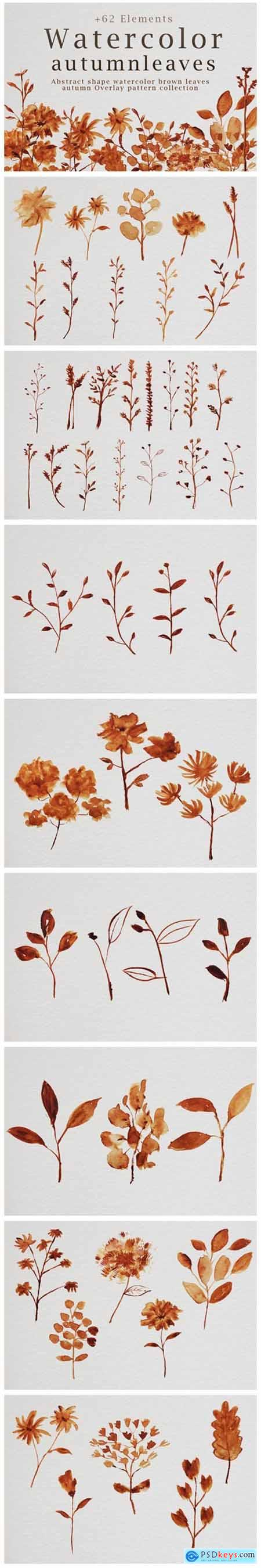 Abstract Shape Watercolor Brown Leaves 7058359