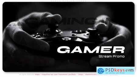 Gamer Stream Promo 29935097
