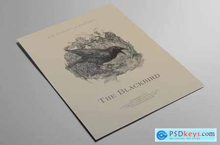 The Blackbird Flyer