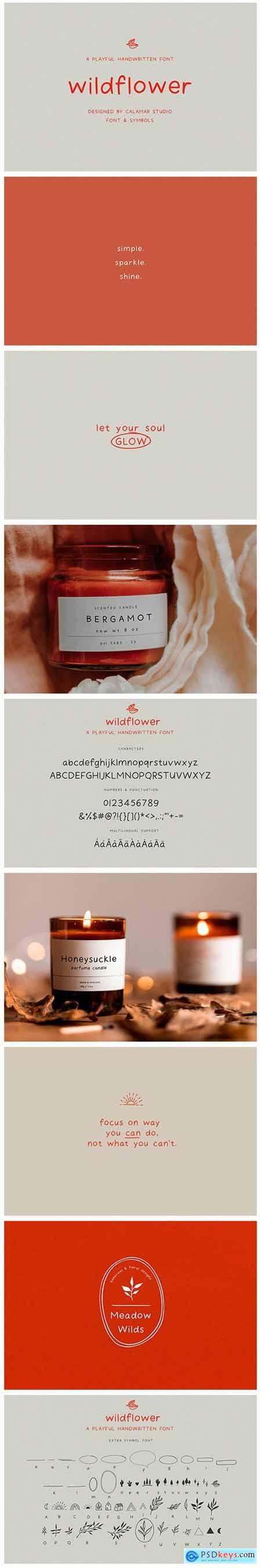 Wildflower - Handwritten Font 5332116