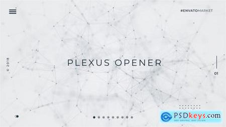 White Plexus Opener 21974671