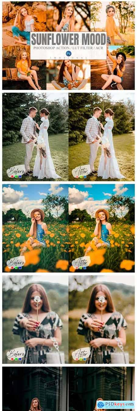 Sunflower Mood Photoshop Actions, LUT 8155818