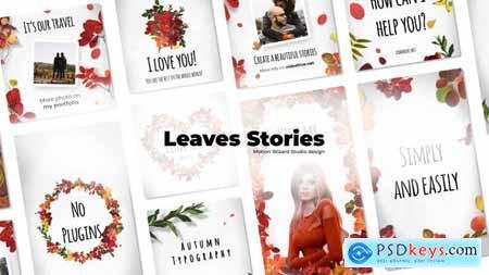 Leaves Stories 30284299