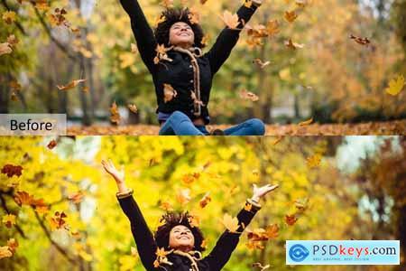 Autumn Mobile Desktop PRESETS 5734324