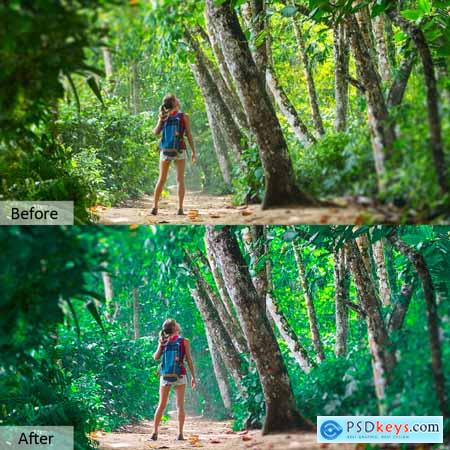 Nature Photoshop Actions 5733425