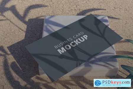 Realistic Business Card Mockup Vol 5