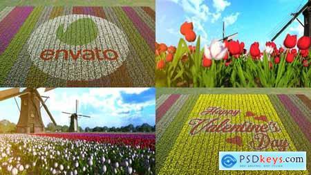 Flower Field 30180636