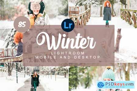 Winter Mobile and Desktop PRESETS 5736480