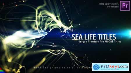 Sea Titles Premiere Pro Mogrt 27914191