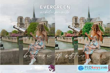 Evergreen Lightroom Mobile Presets 5017153