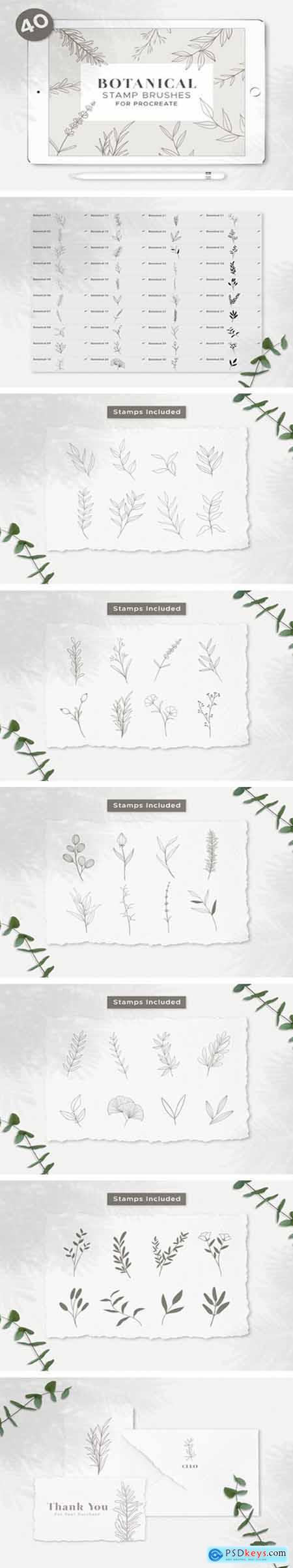 Botanical Procreate Stamp Brushes 8918638