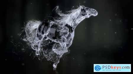Splashing Horse Logo Reveal 20457656