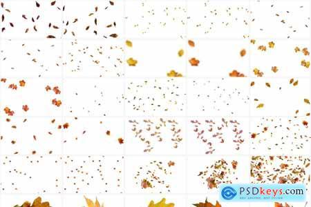 40 Autumn Leaves Overlays 5928912