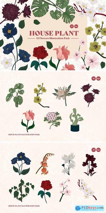 House Plant Illustration Kit