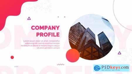 Company Profile 27034830