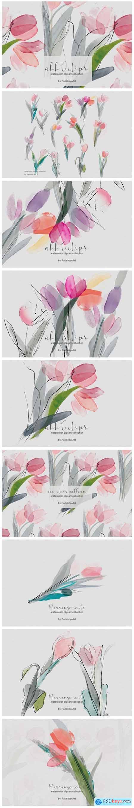 Delicate Watercolor Tulip Clipart Set 3982179