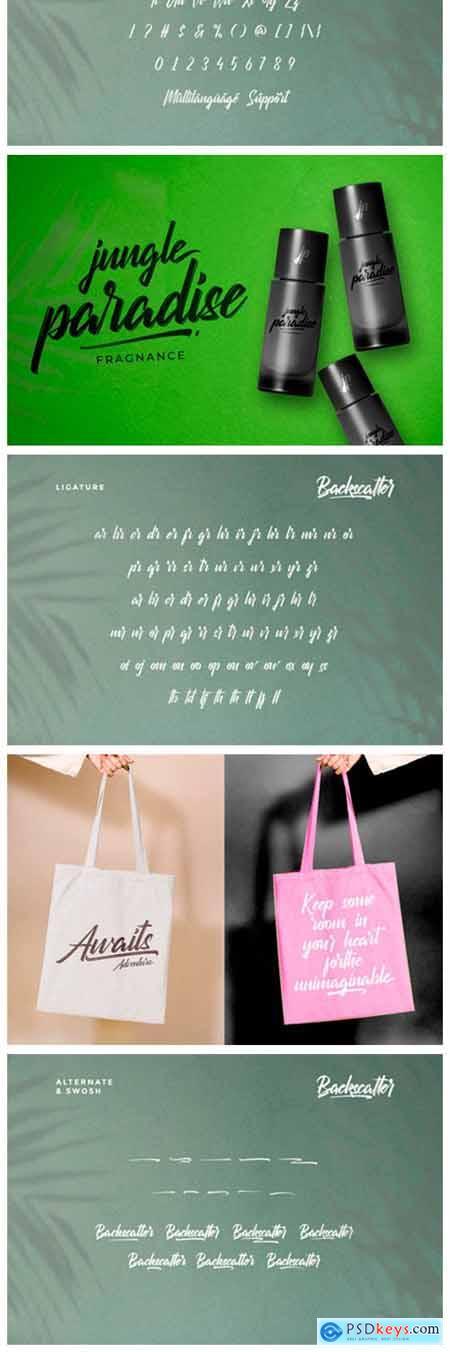 Backscatter Font