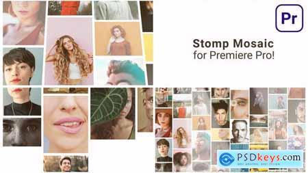Mosaic Stomp Multi Photo Logo 31535403