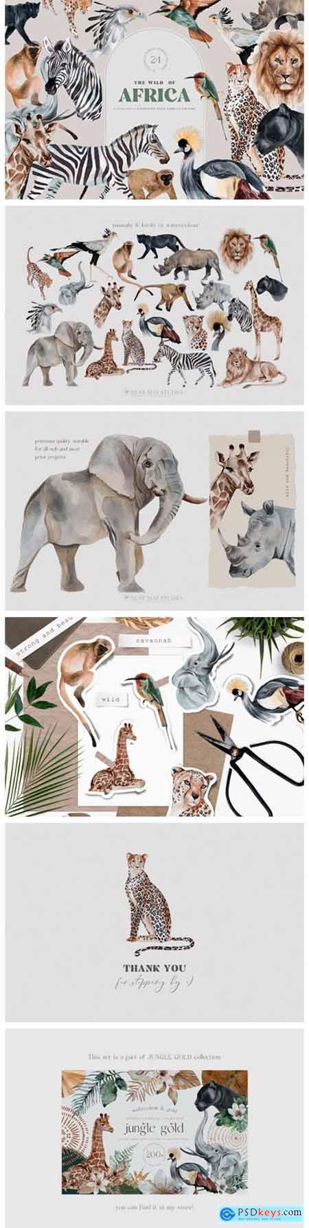 Wild Animals of Africa Illustrations PNG 10996275