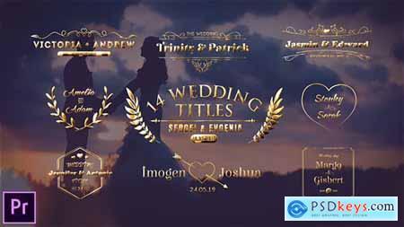 Wedding Titles 23793642