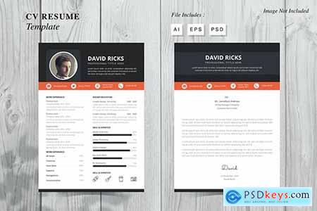 David Ricks - CV Resume Template