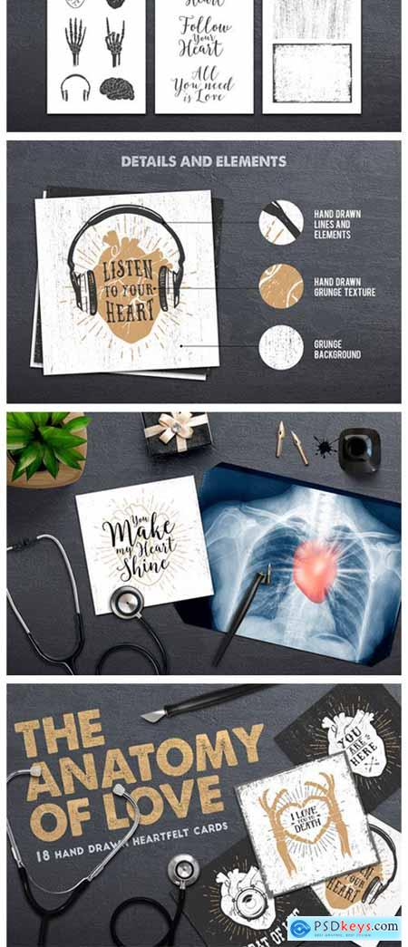 Anatomy of Love - Collection of Cards 637962