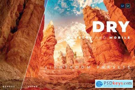 Dry Desktop and Mobile Lightroom Preset