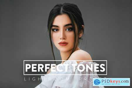 10 Perfect Tones Lightroom Preset 6144967