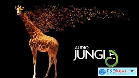 Audiojungle Flash Bulb 15 32131592