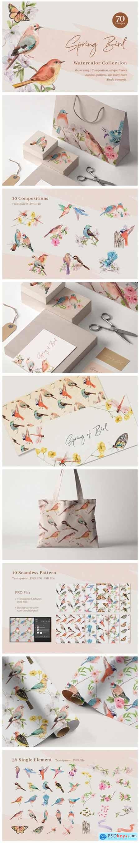 Spring Birds of Spring Watercolor 11459912