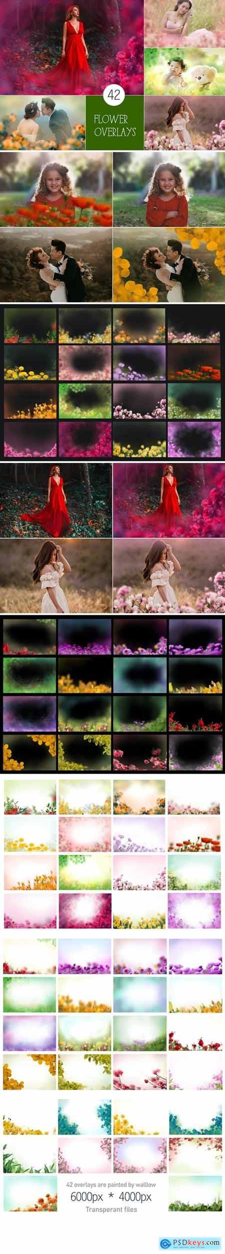 42 Painted Flowers photo Overlays