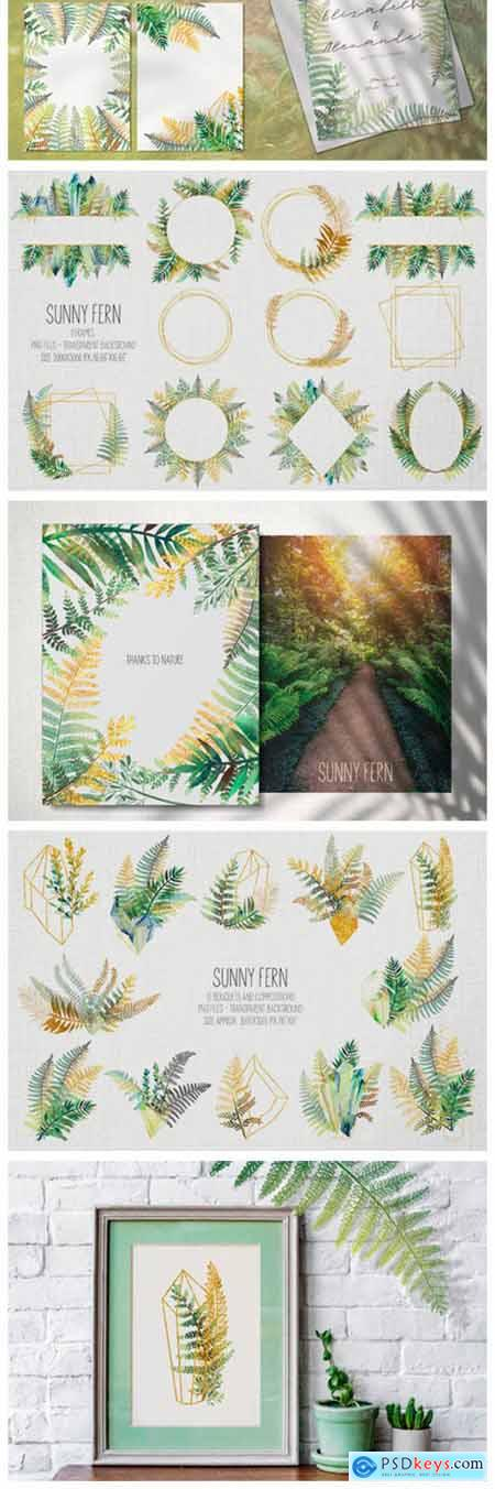 Sunny Fern Collection 12049944