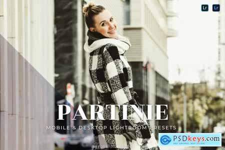 Partinie Mobile and Desktop Lightroom Presets